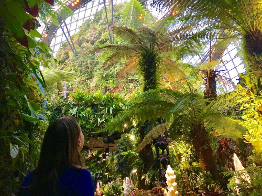 Tips overstap Singapore: Cloud Forest bezoeken