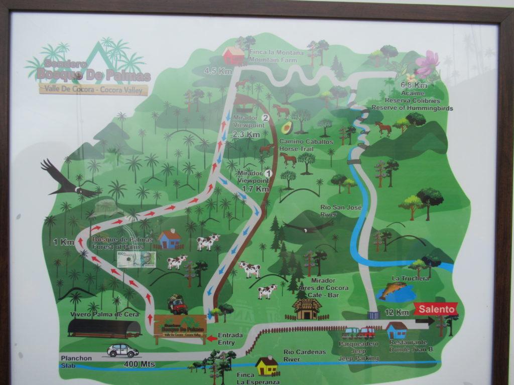 Route hike: Valle de Cocora