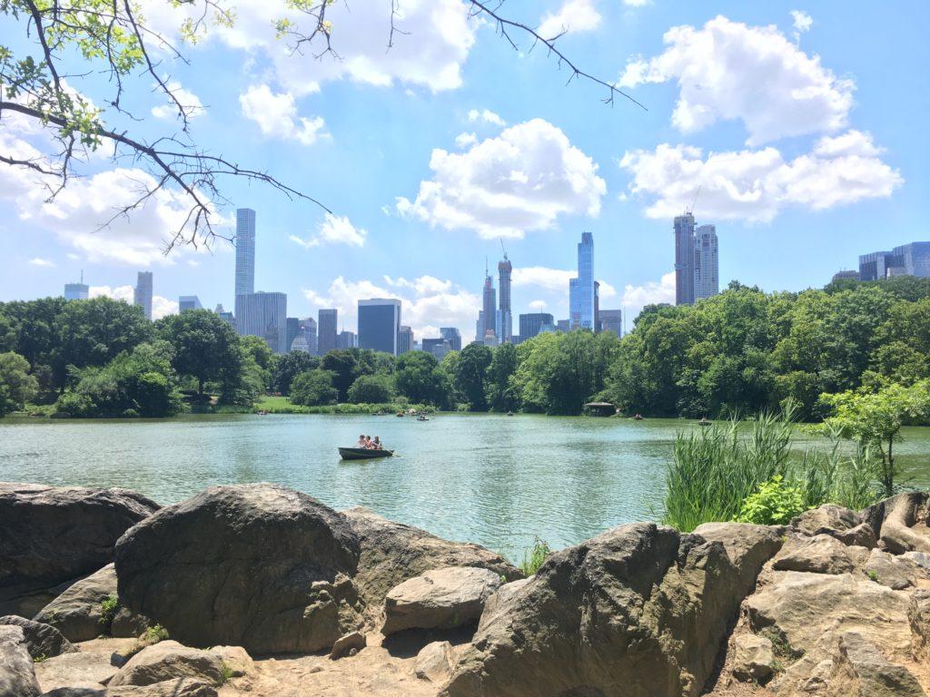 Uitzicht vanuit Central Park