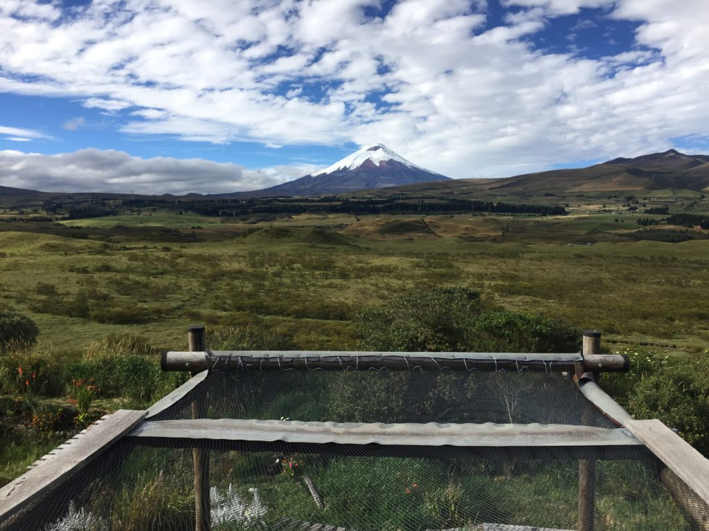 Route Ecuador in 3 weken: Secret Garden Cotopaxi