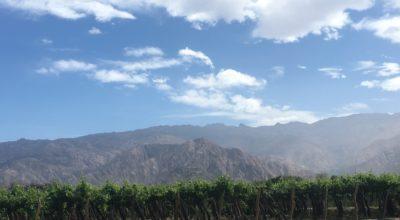 Wijnroute door Argentinië: Het landschap rondom Cafayate