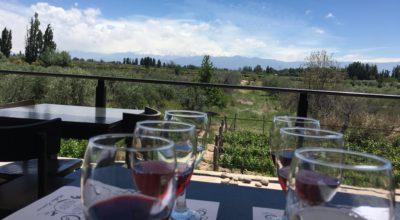Wijnroute op de fiets door Mendoza: Mevi