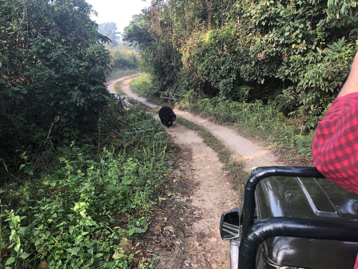 Bezoek aan Chitwan National Park